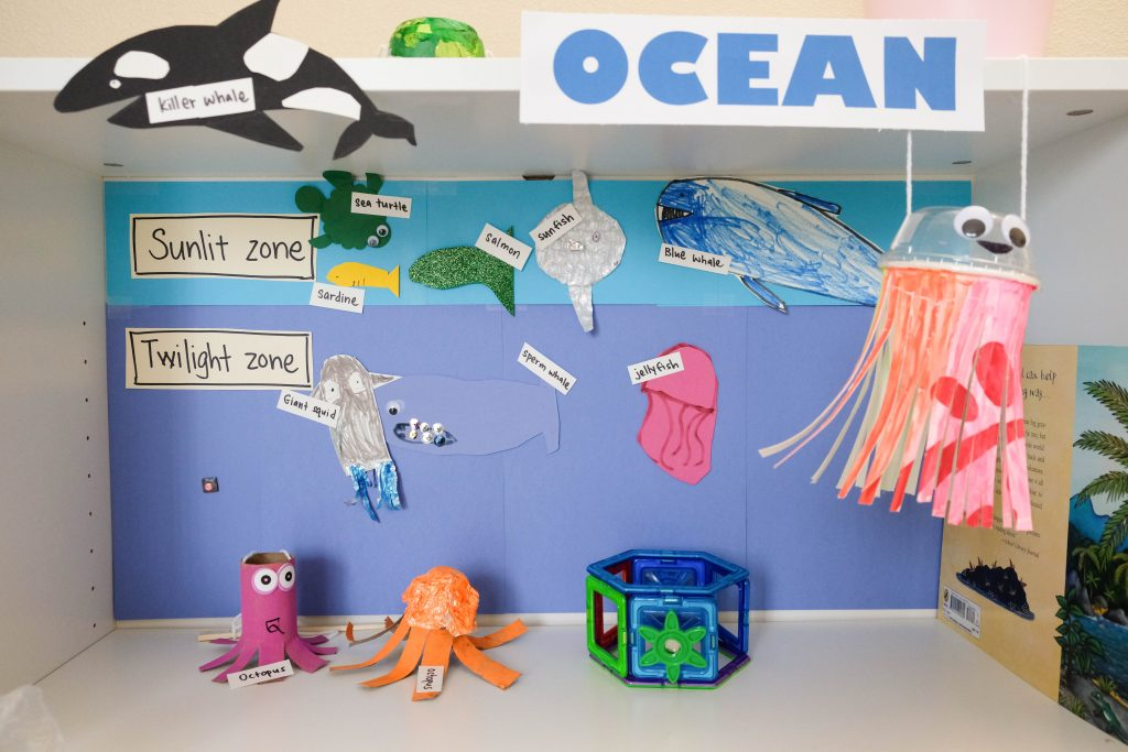 Ocean zones learning activity for kids