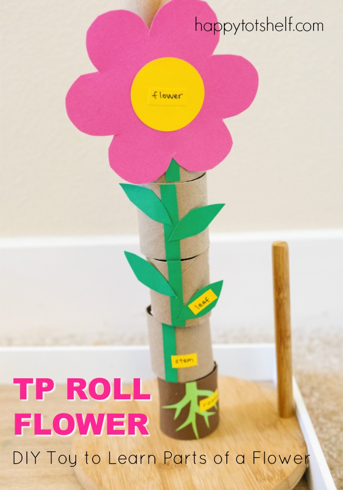 TP Roll Parts of a Flower Learning Toy